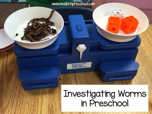 Investigating WORMS in Preschool