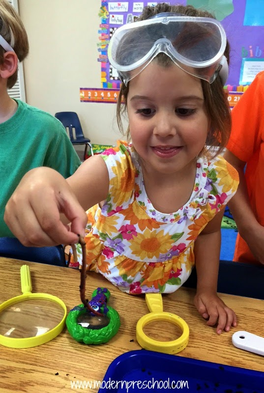 Hands-on preschool learning with real worms - science, math, literature skills included - from Modern Preschool