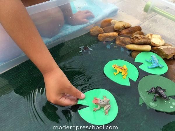frog splashing pond small world