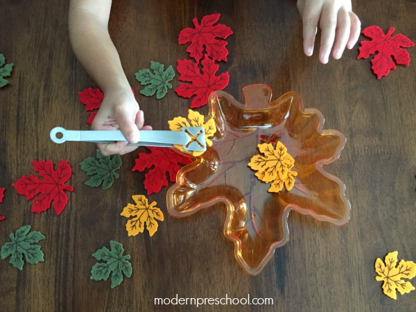 Fine motor fall leaf activity for preschoolers & toddlers. Practice sorting, counting, and colors from Modern Preschool!