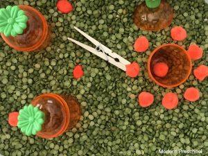 Planting Carrots Sensory Bin