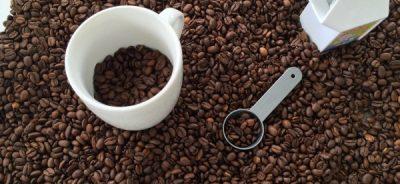 coffee-bean-sensory-bin-2