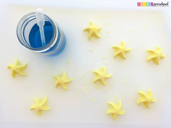 Sea star simple science for kids to use during the summer! Explore baking soda and vinegar reactions with your ocean or under the sea theme.